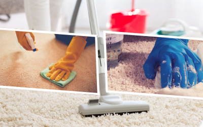 Deep Cleaning Carpet Flooring by Hand